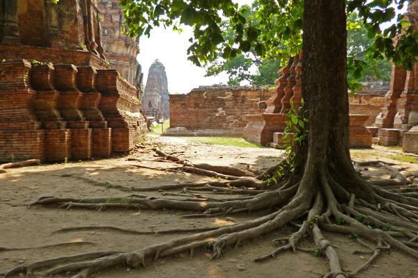 ayutthaya01